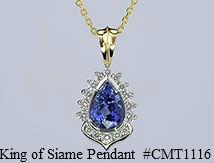 CMT1116_medc