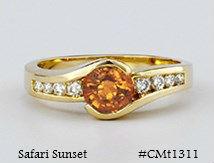 CMT1311_medA